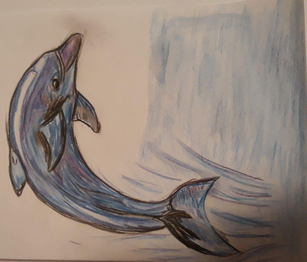 Delphin Gezeichnet Zeichnen Zeichnungen Kunst