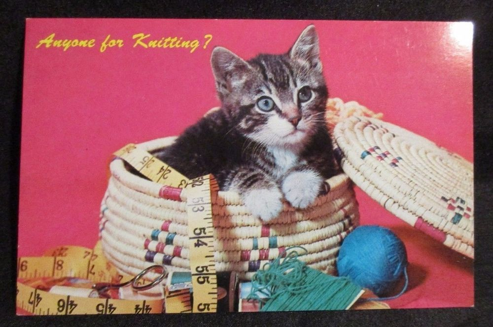 Knitting Sewing Box Cat Kitten Yarn Measuring Tape Sew Pink Vintage Postcard Vintage Postcards Vintage Cat Cats And Kittens