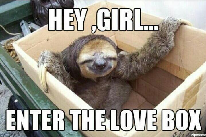 sloth memes | love sloth memes | The stuff that makes me ...