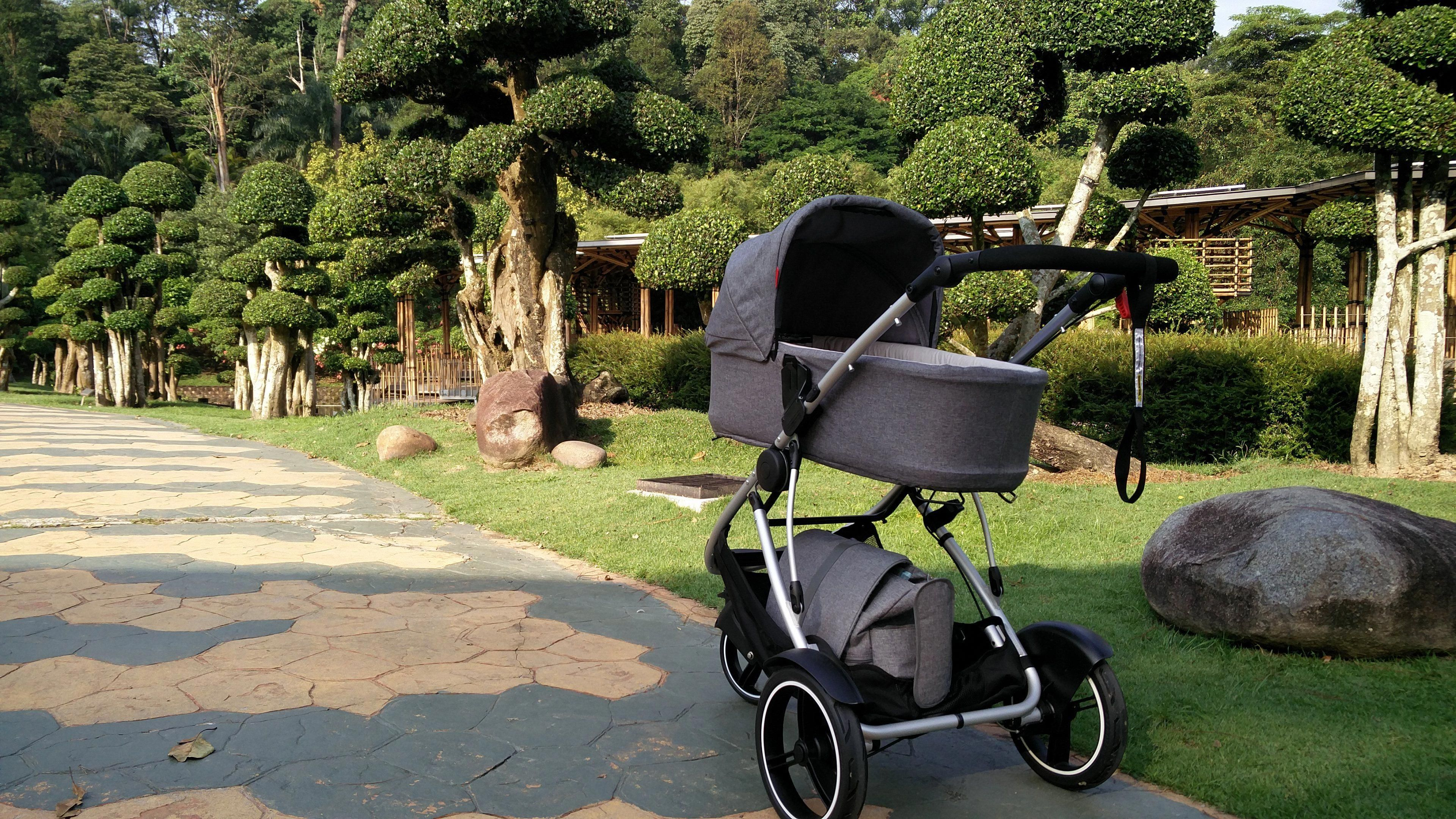 e6d8cf70a46 luxurious phil teds dash stroller and snug carrycot