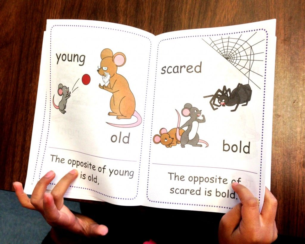 The Opposites Rhyming Song Picture Book And Learning
