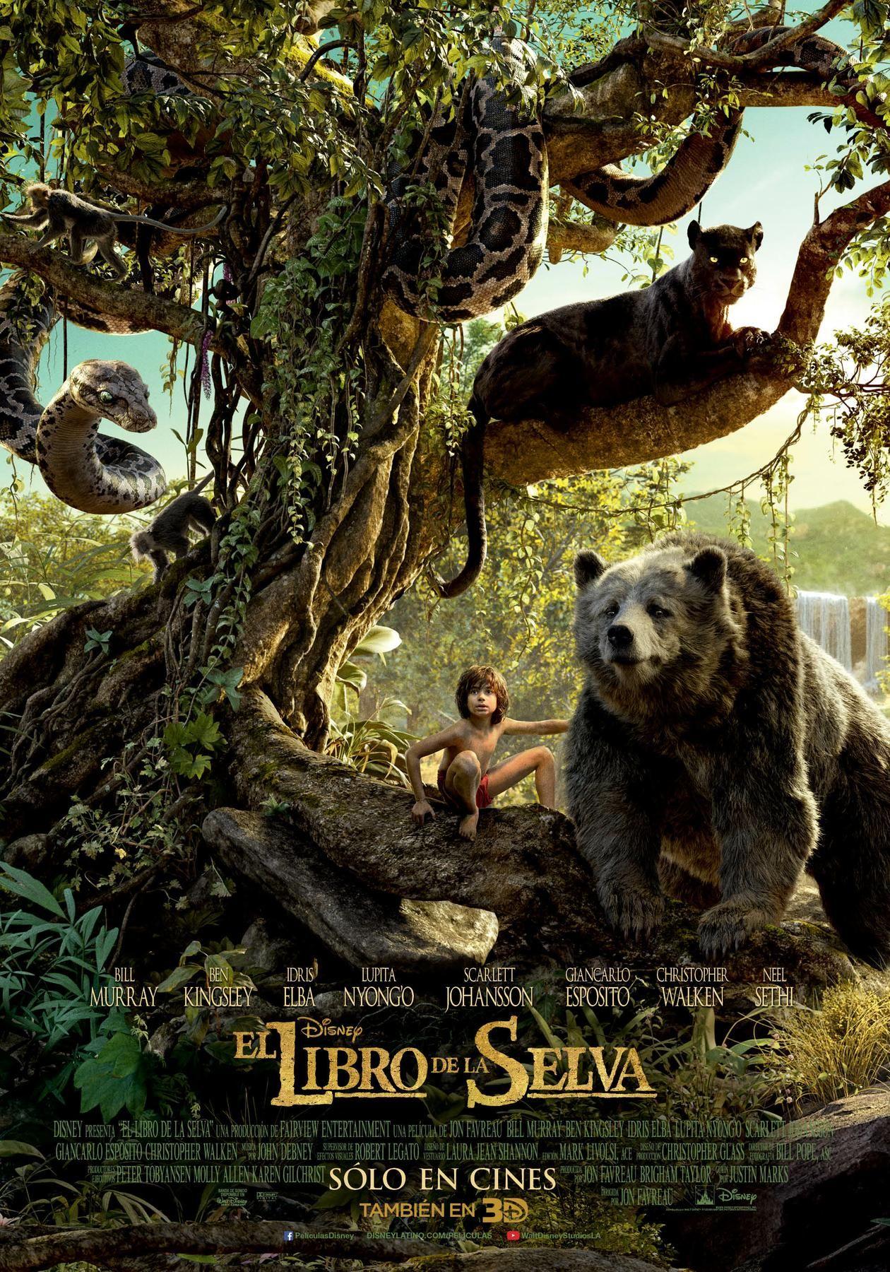 Pin De Biblioteca De Sant Fruitós De En Peliculas Para Ver El Libro De La Selva Selvas Fotos De Cine