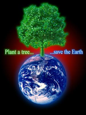 Plant A Tree Save The Earth   Minutia  Earth Mother Earth Earth  Plant A Tree Save The Earth