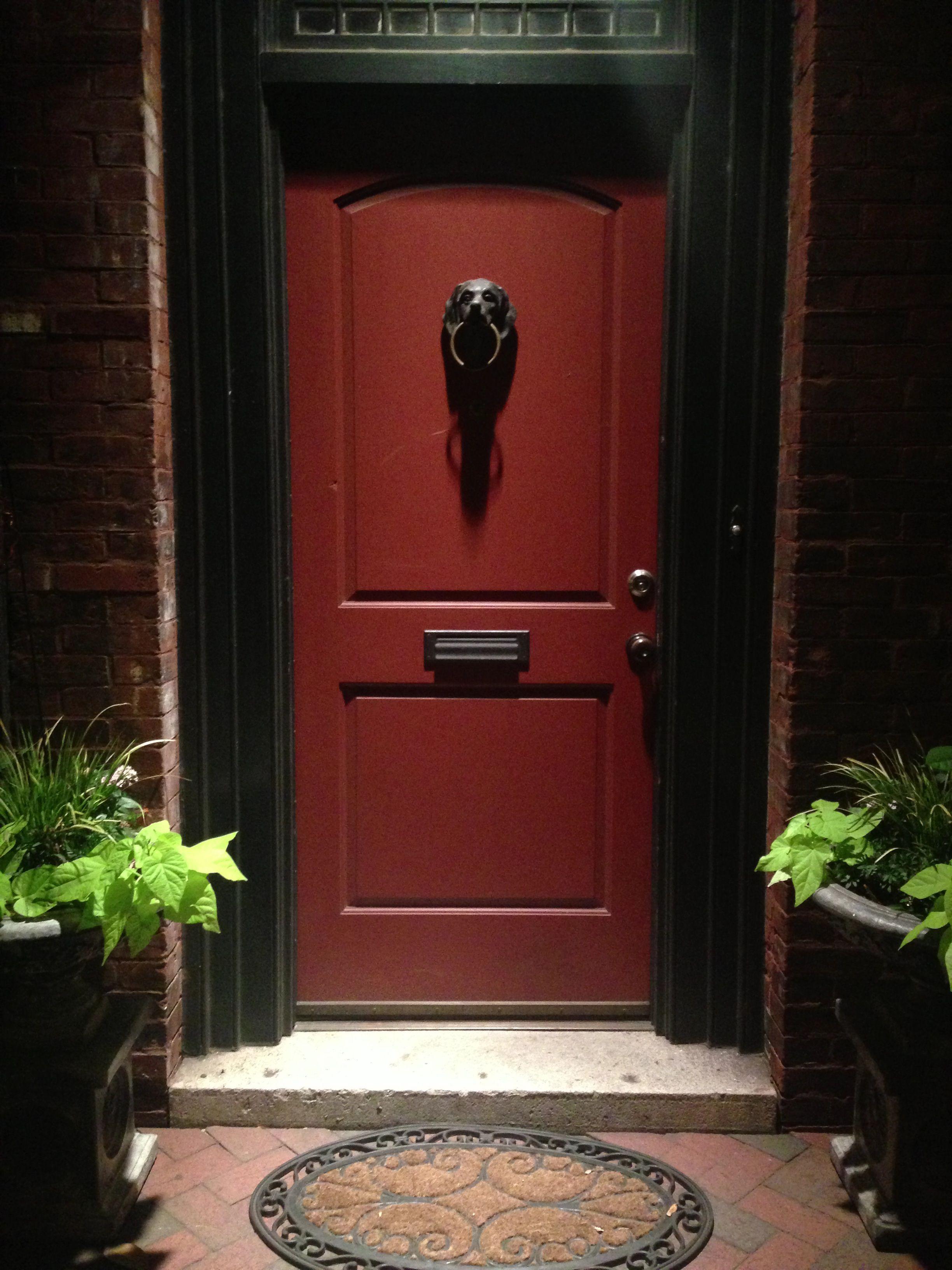 Dog head door detail in savannah, Door detail