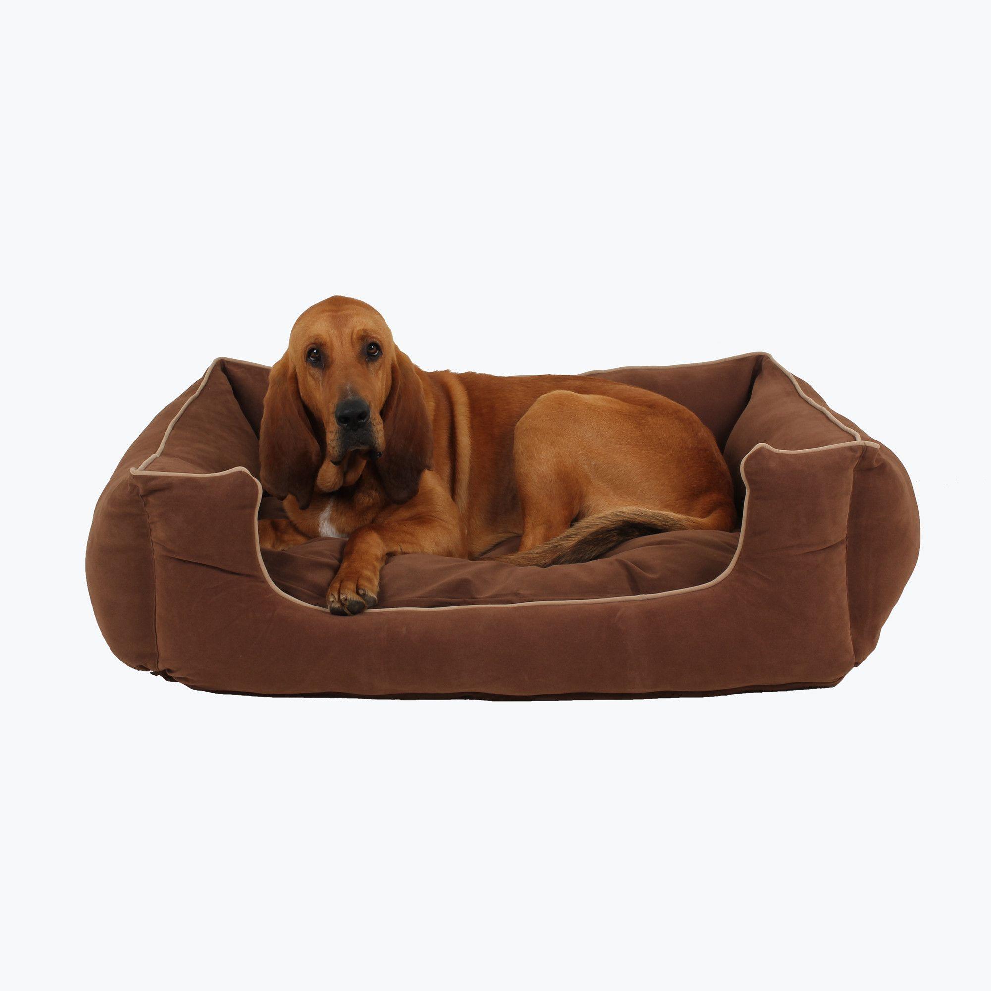 Kuddle Lounge Dog Bed