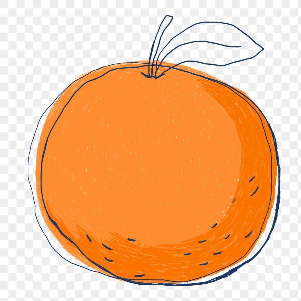 Cute Orange Fruit Logo Png Sticker Hand Drawn Free Image By Rawpixel Com Namcha Fruit Logo Fruits Drawing Orange Fruit