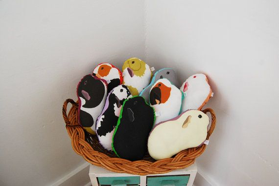 Choose Your Guinea Pig Plushie / Guinea Pig by PeriwinkleNuthatch
