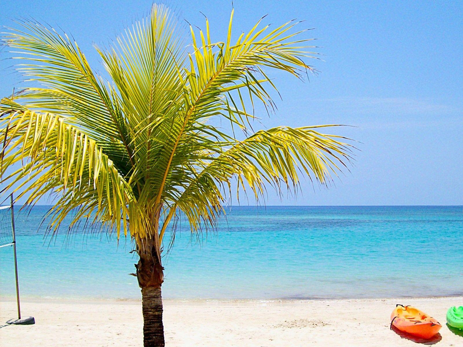 Las mejores playas de América del Sur   Roatan, Crucero