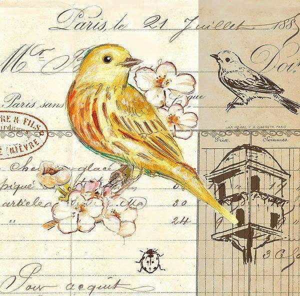 Craftydeas decoupage images birds pajaros pinterest - Laminas decorativas vintage ...