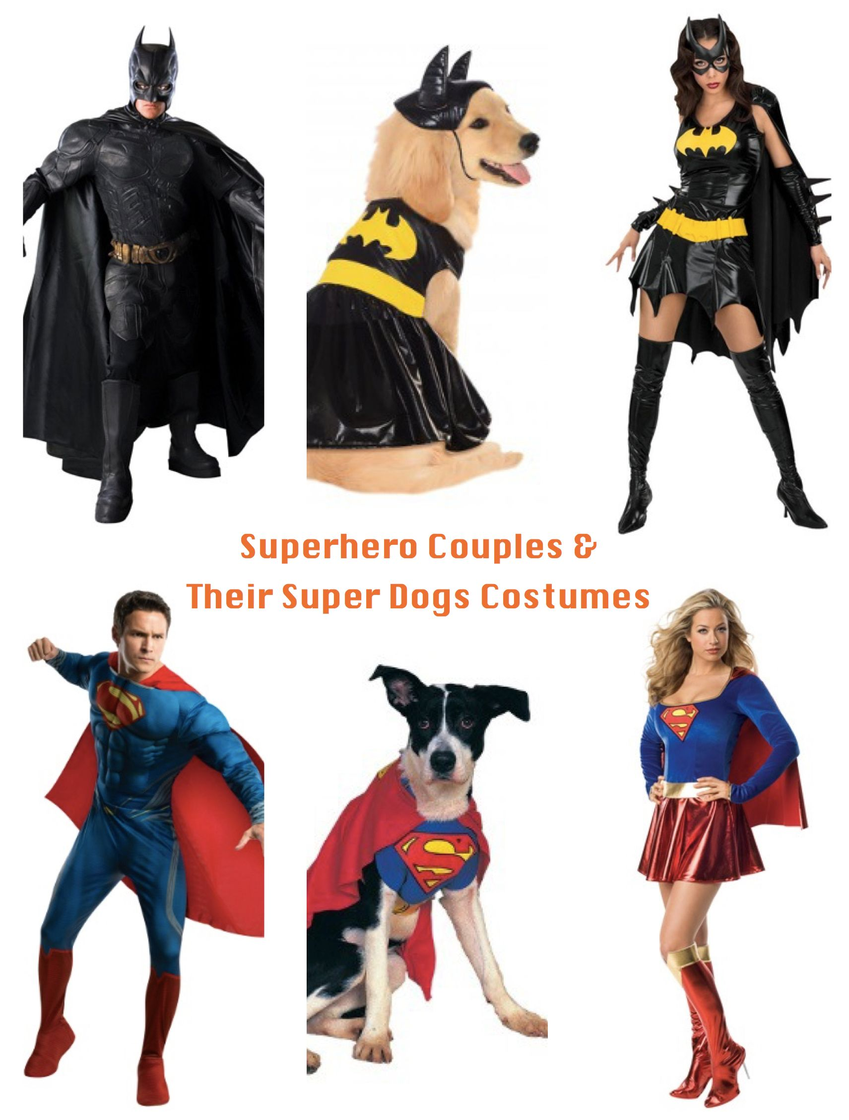 superhero couples & their super dogs halloween costumes | pet gets