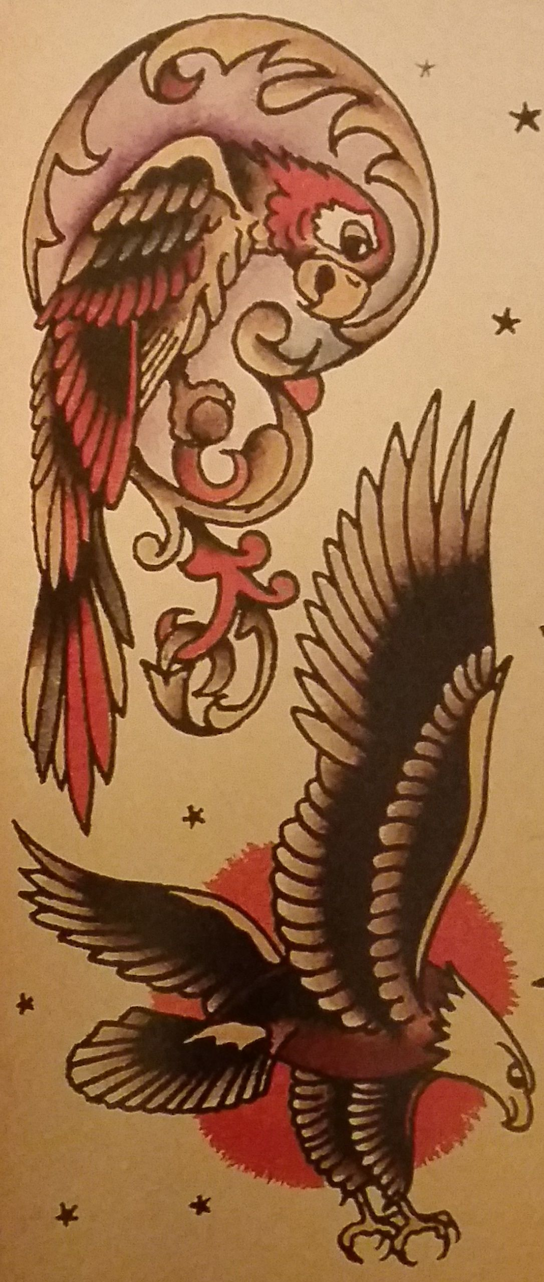 American eagle tattoos high quality photos and flash - Traditional Old School Tattoo Sailor Jerry Parrot Eagle Bird