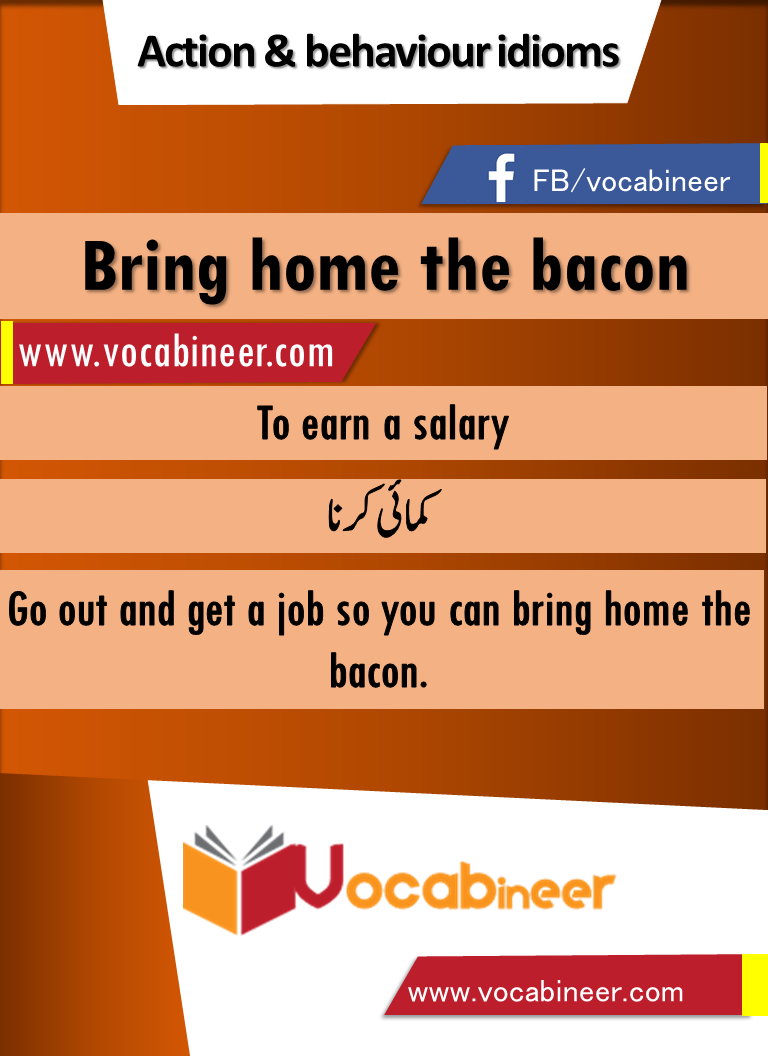 hindi meaning of bacon