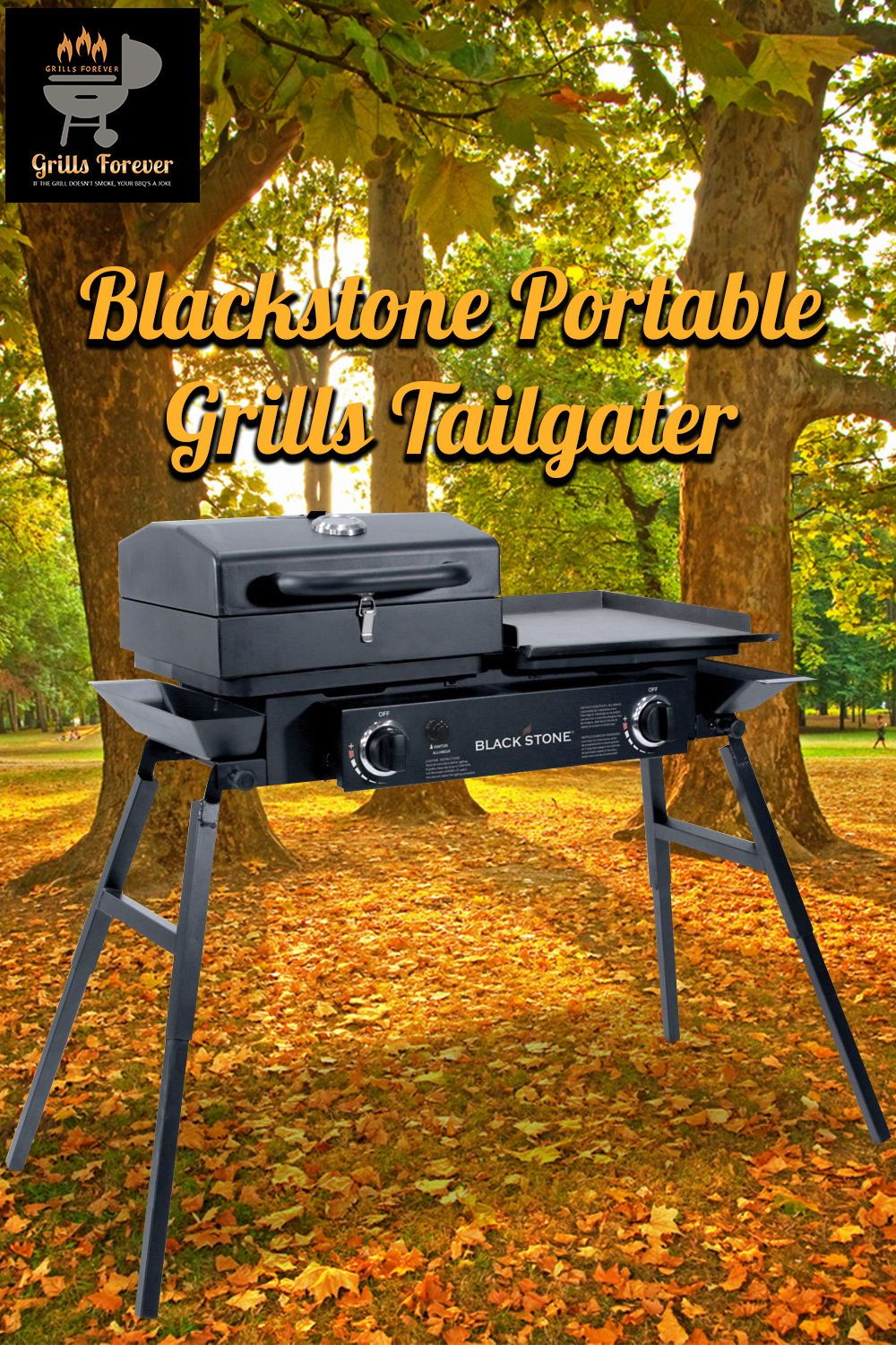 Blackstone Stainless Steel Outdoor Grill Best Flat Top Gas Grills Used Electric Flat Top Grill Used Flat Top Gri Grilling Flat Top Grill Best Portable Grill