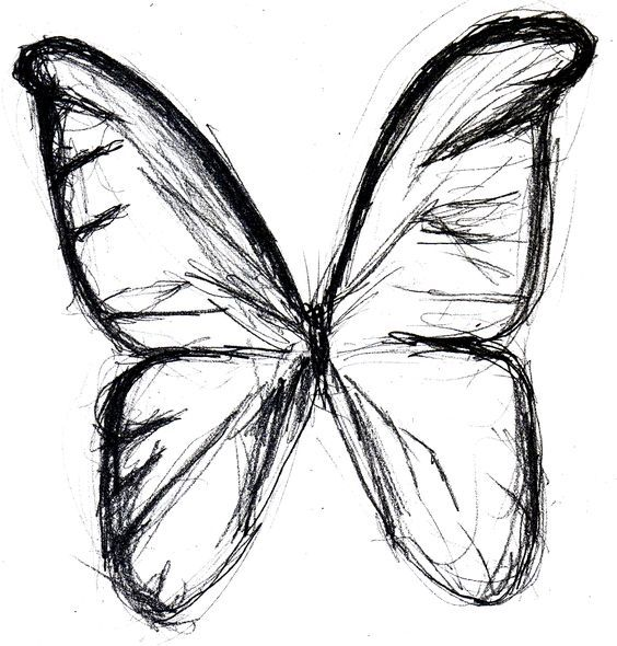 Butterfly Sketches Butterfly Drawing Butterfly Tattoo Butterfly Wings Butterfly Sketch Butterfly Drawing Drawings Pinterest