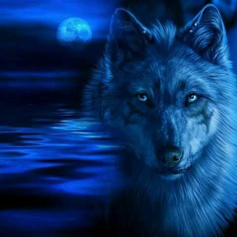 Dark Blue Neon Wolf Wolf Wallpaper Mythical Creatures Art Fantasy Wolf