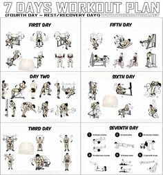 7 Days Workout Plan Full Body Fitness Training Leg Arm