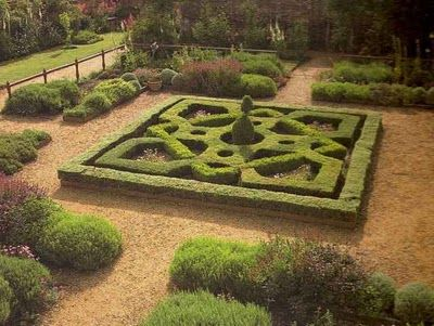 colorful knot garden Google Search Decorating ideas Pinterest