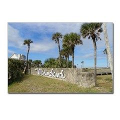 Marineland Postcards (Package of 8)> Patty Weeks Old Florida Items for Sale