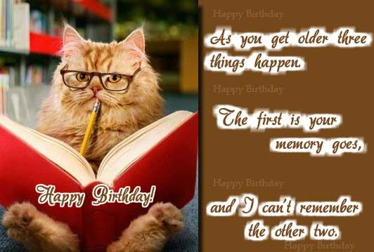 Click Here To Send A Funny Birthday Wish Cat