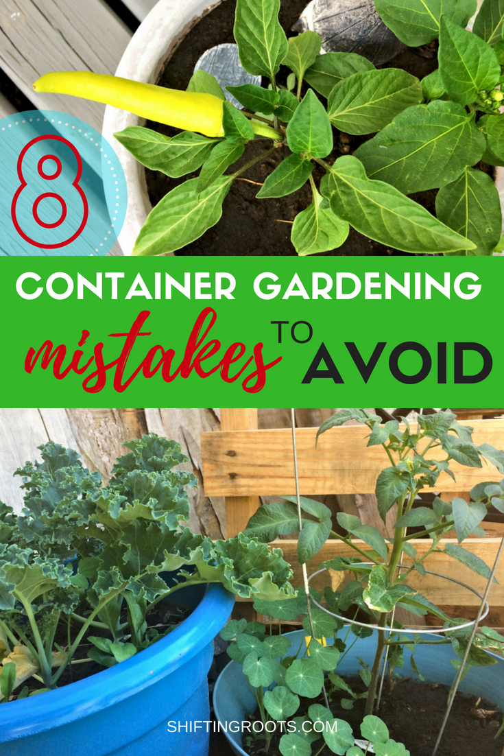 Avoid These 8 Mistakes for a Better Vegetable Container Garden is part of Container gardening vegetables, Container vegetables, Container gardening, Container garden design, Bucket gardening, Container gardening flowers - Planning a vegetable container garden in plastic pots on your deck or balcony  Here's 8 beginner container gardening mistakes you'll want to avoid