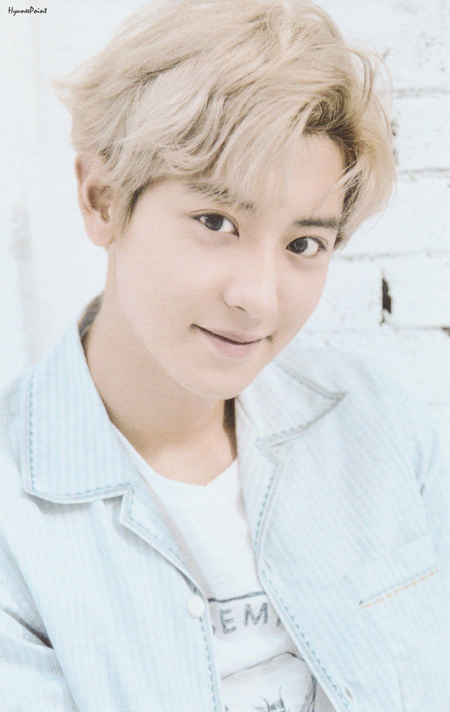 Chanyeol SCAN Artist & FLO Photocard | #EXO di 2020 ...