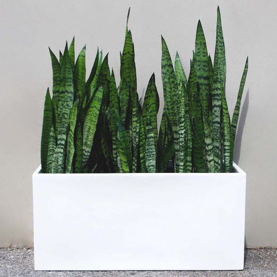Belmont Rectangle Modern Planter Box White Made From Hand Laid