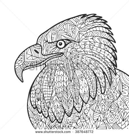Vector hand drawn eagle bird illustration for adult coloring book - new eagles to coloring pages