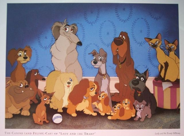 Lady And The Tramp Cast Lady And The Tramp Disney Ladies Disney Art