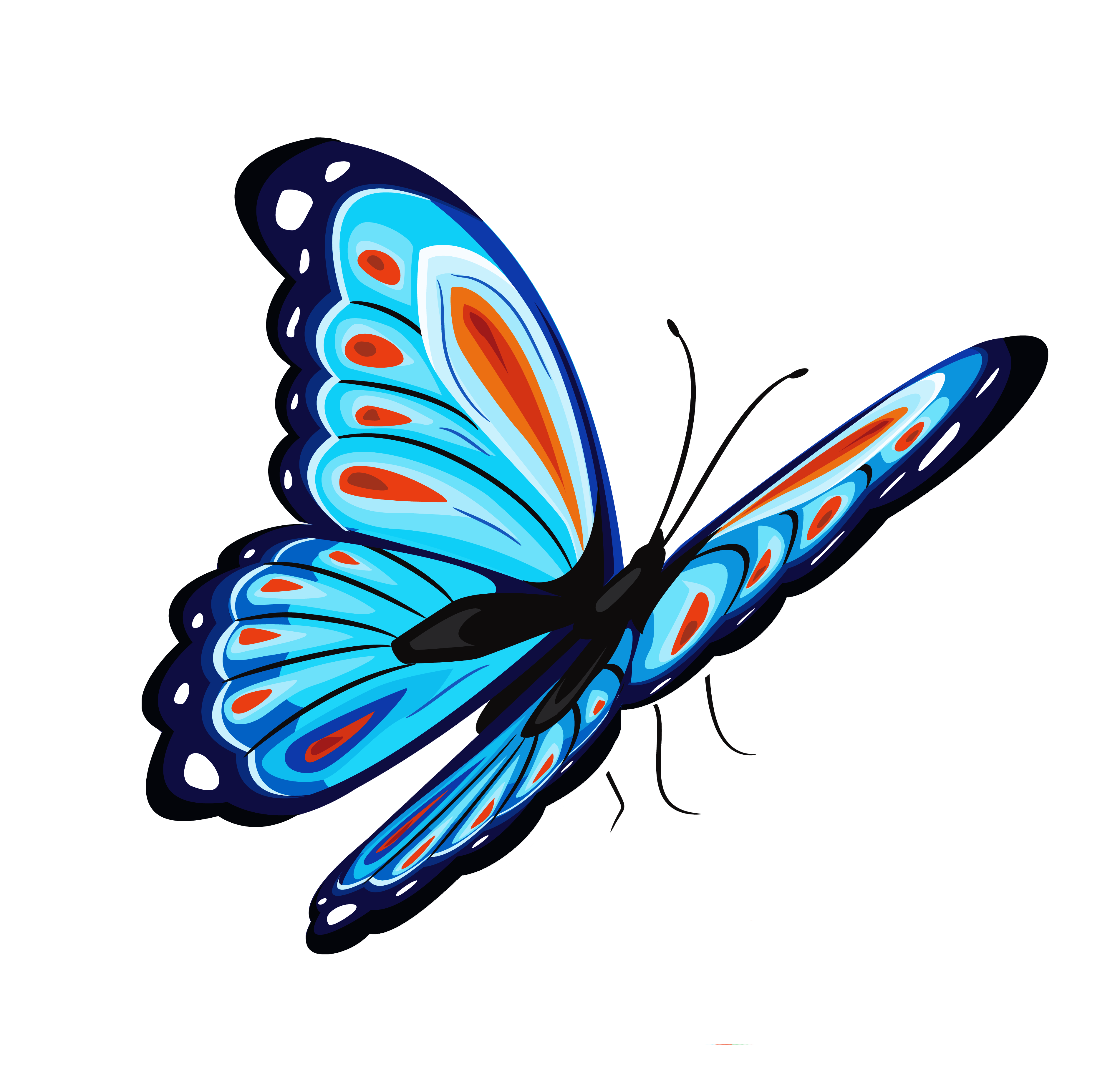 Blue And Red Butterfly Png Clipart Picture Butterfly Clip Art Butterfly Watercolor Butterfly Images