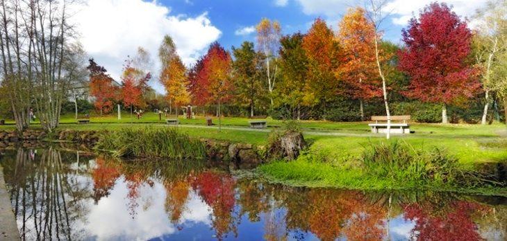 En el Área Recreativa de Gabenlle podemos disfrutar de un día en plena naturaleza con magníficas paisajes en su paseo fluvial por el río Anllóns.