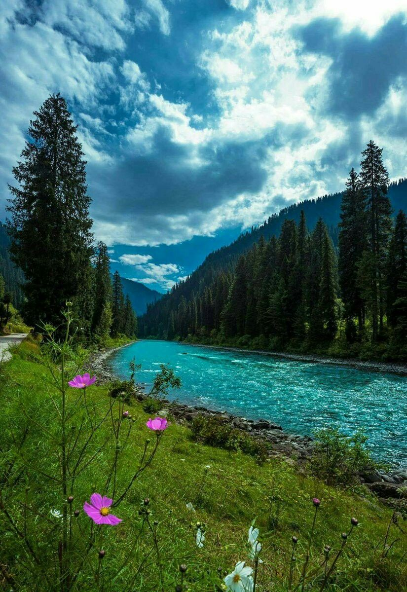 Gurez Valley Kashmir India Beautiful Scenery Pictures Valley Of Flowers Kashmir India