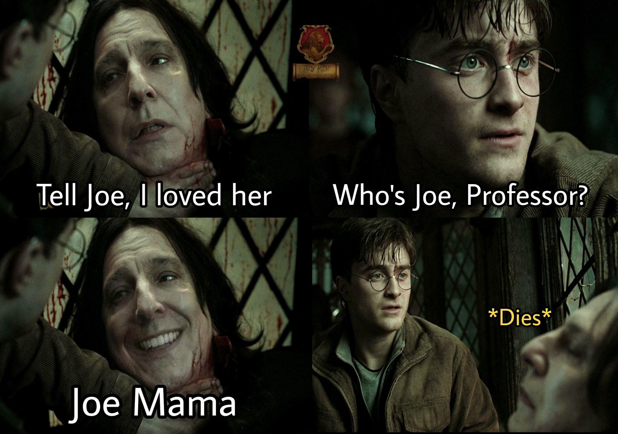Pin By Gigimora On The Good Eggs Harry Potter Memes Hilarious Harry Potter Jokes Really Funny Memes
