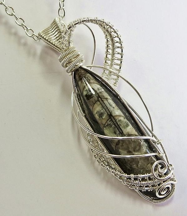 Orthoceras Fossil Wire-wrapped Lattice Pendant With Chain - Ofp25 by Heather Jordan