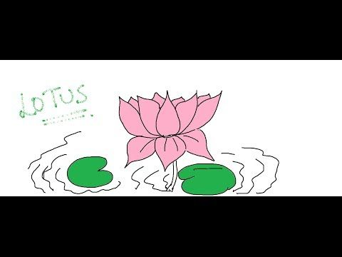 Pin By Frankie Lydon On Flowers Flowers Drawing Lessons For Kids
