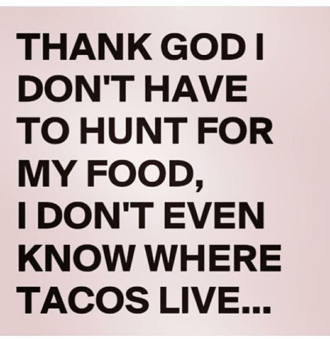 Funny Hunting Quotes Pinstephanie Aragon On Made Me Laugh  Pinterest  Humor