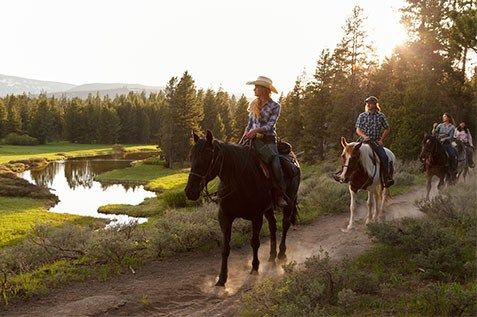 Headwaters Lodge At Flagg Ranch   Cabins In Between Yellowstone And Grand  Teton National Park