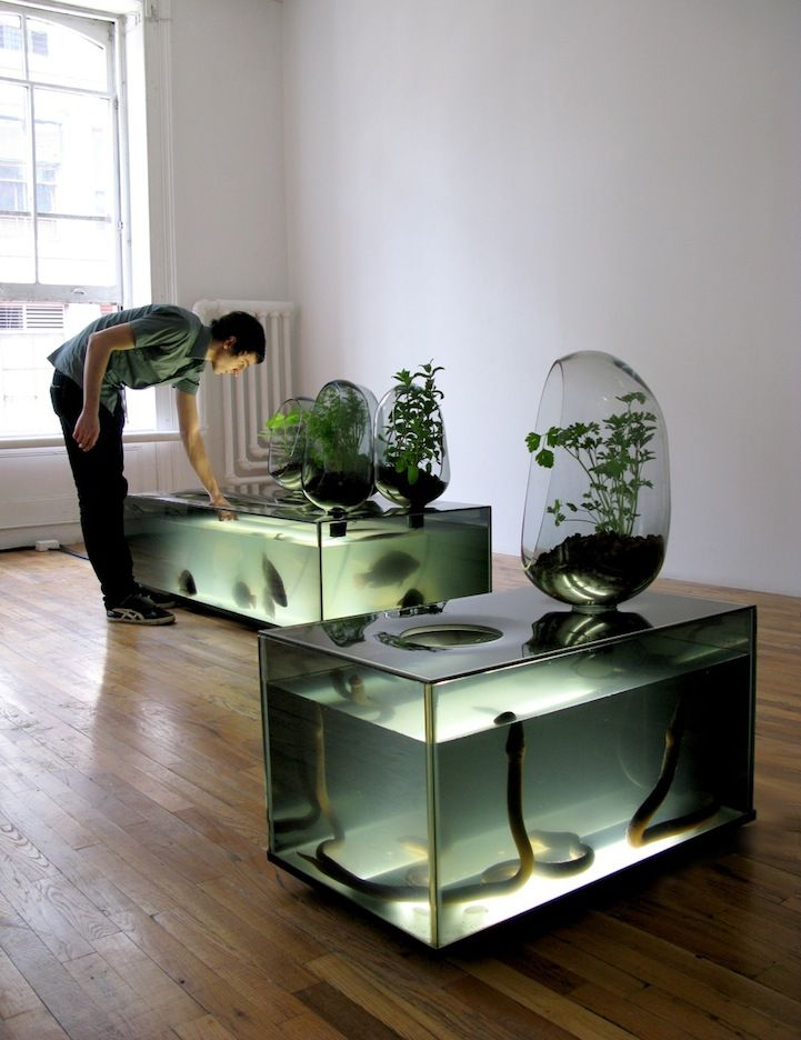 Amazing Diy Fish Tank Combined With Gardening Eco System My Modern Metropolis