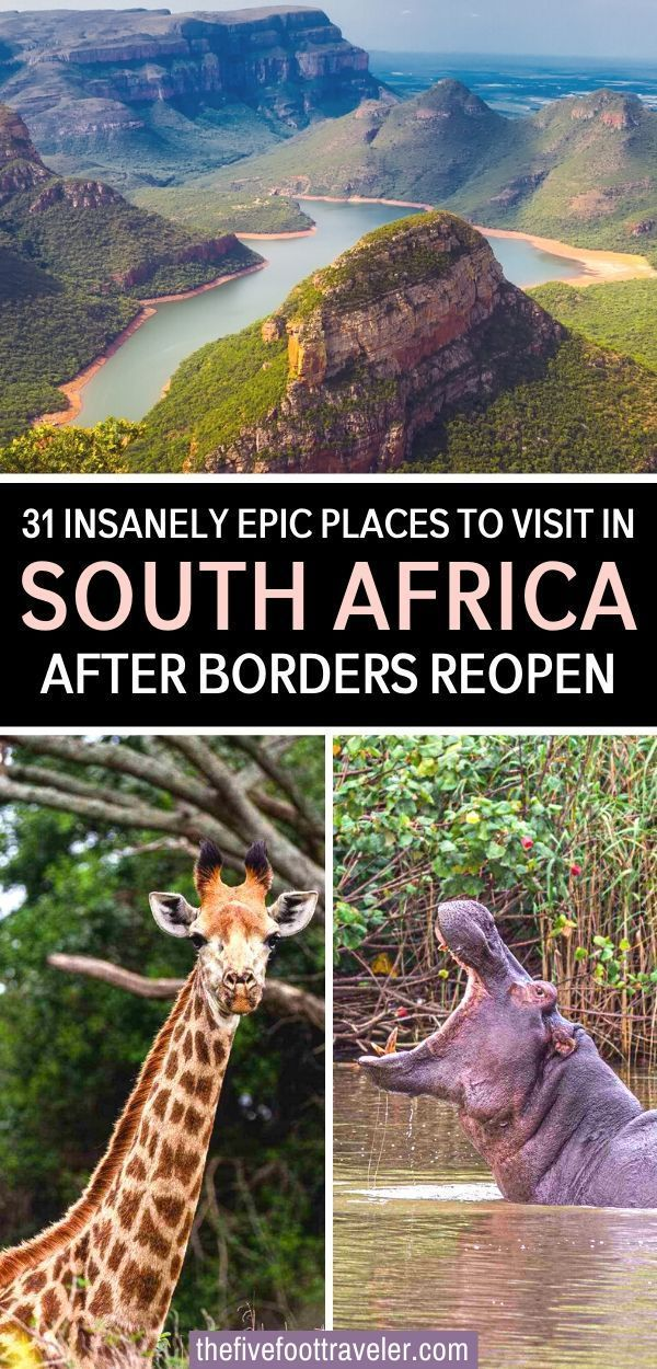 This is the Most Epic South Africa Bucket List after borders reopen and it's safe to travel again. The 31 most amazing places you need to see in South Africa. Arguably the easiest country on the continent to navigate, South Africa is the perfect start for the first time visitor to Africa!   South Africa Travel   South Africa itinerary   What to do in South Africa   South Africa Bucket List   Most Beautiful Places in South Africa   South Africa Vacation   #africa #southafrica