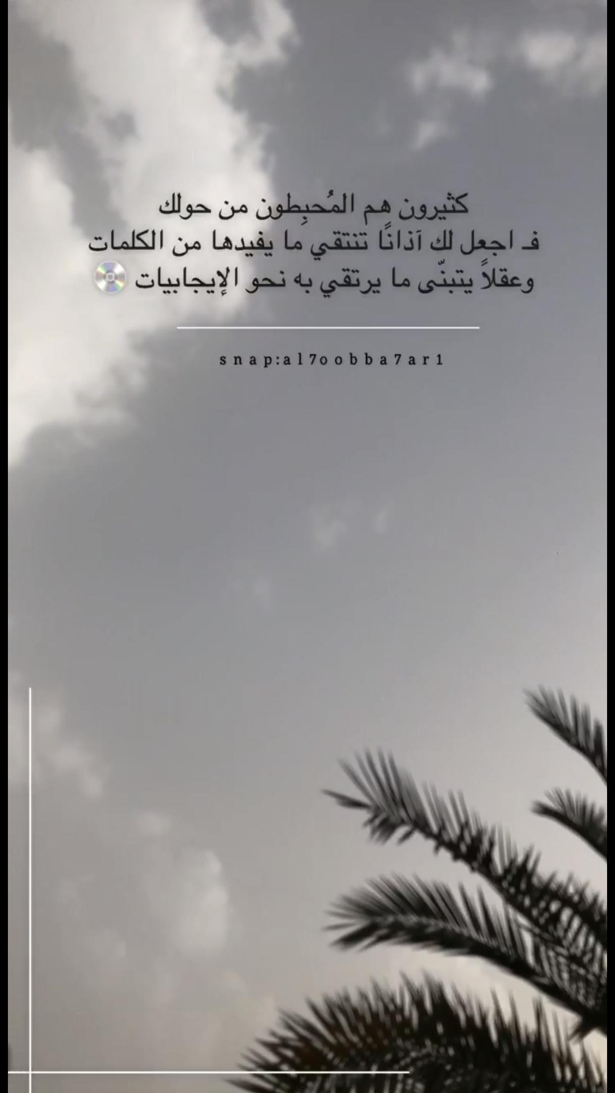 Telegram Contact Live Khadijah Words Quotes Instagram Quotes Arabic Quotes