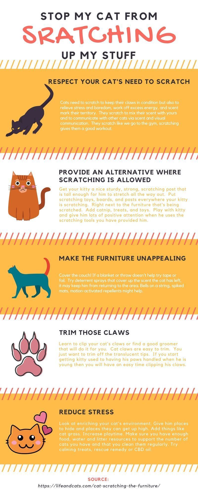 Infographic How To Stop A Cat From Scratching Up Your Stuff Prevent Scratching Train Kitty To Use Scrat Cat Scratchers Cat Training Scratching Cat Training