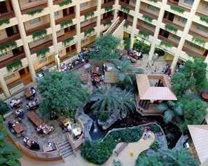 Emby Suites Chicago North S Deerfield Hotel Il Atrium Koi