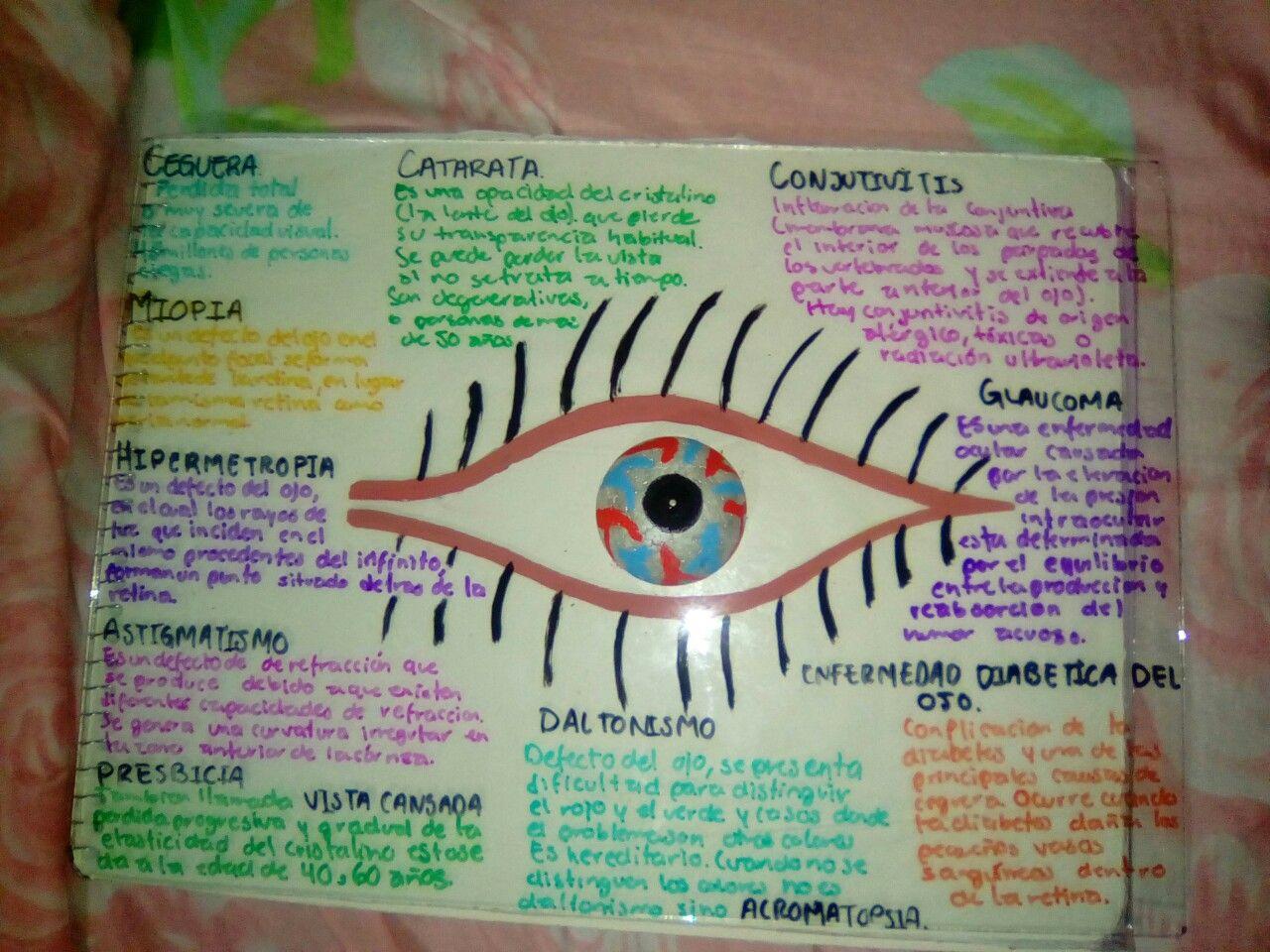 Maqueta de ojo
