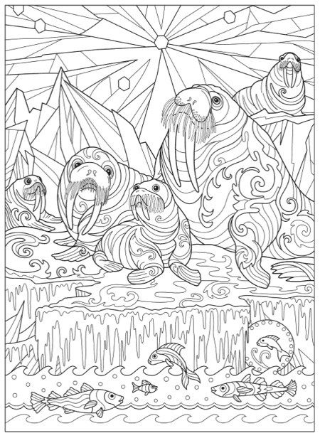 Hottest New Coloring Books: February 2018 Roundup | Color | Coloring ...