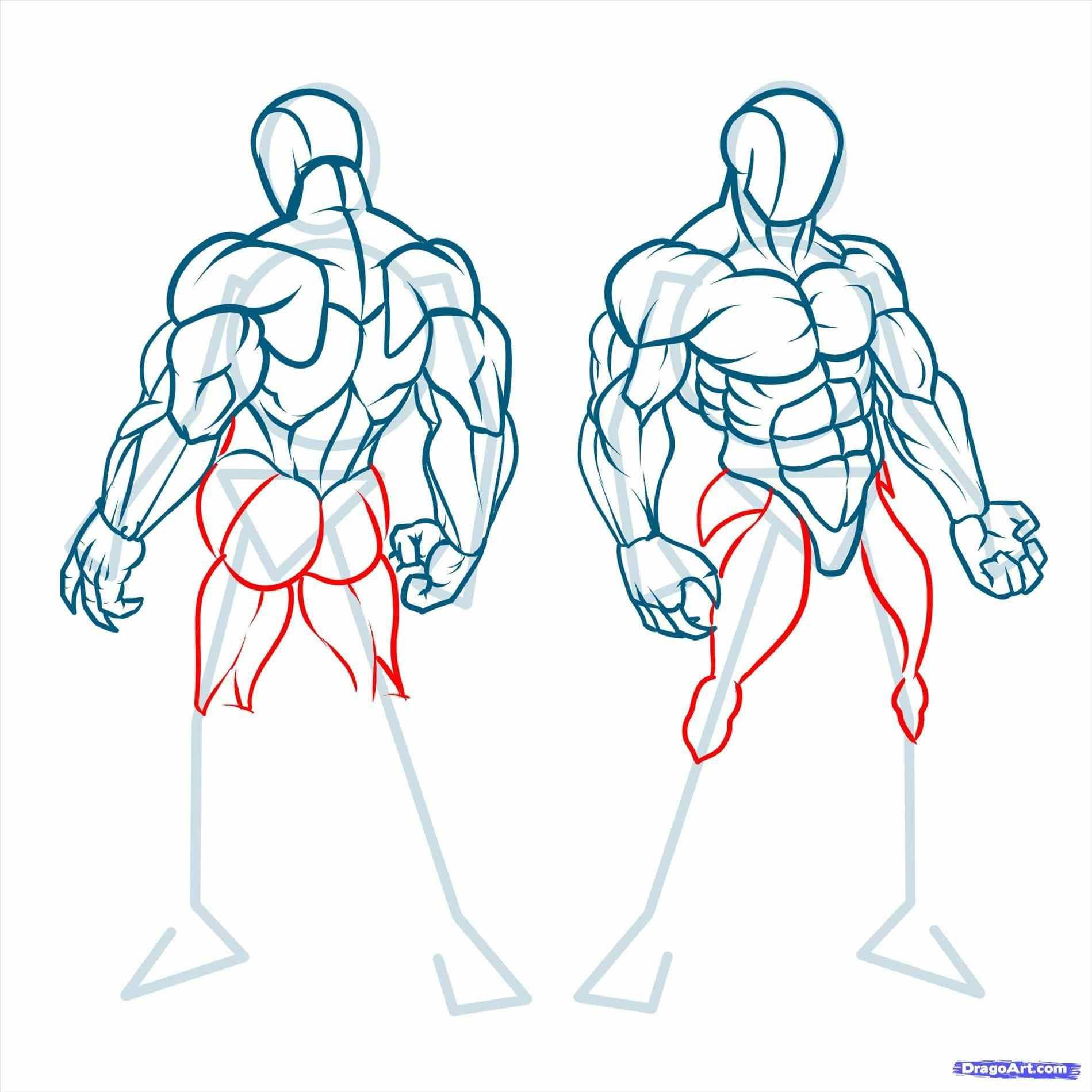 Image Result For Anime Boy Full Body Figure Drawing Human Anatomy Art Figure Drawing Reference