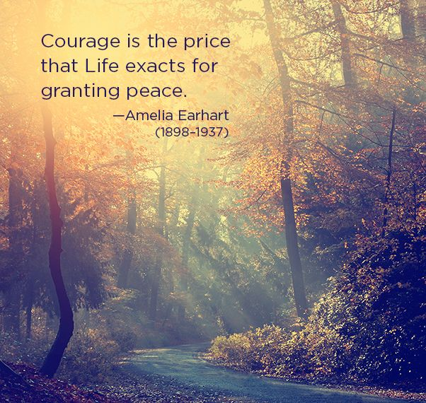 Courage is the price that Life exacts for granting peace - price quotations