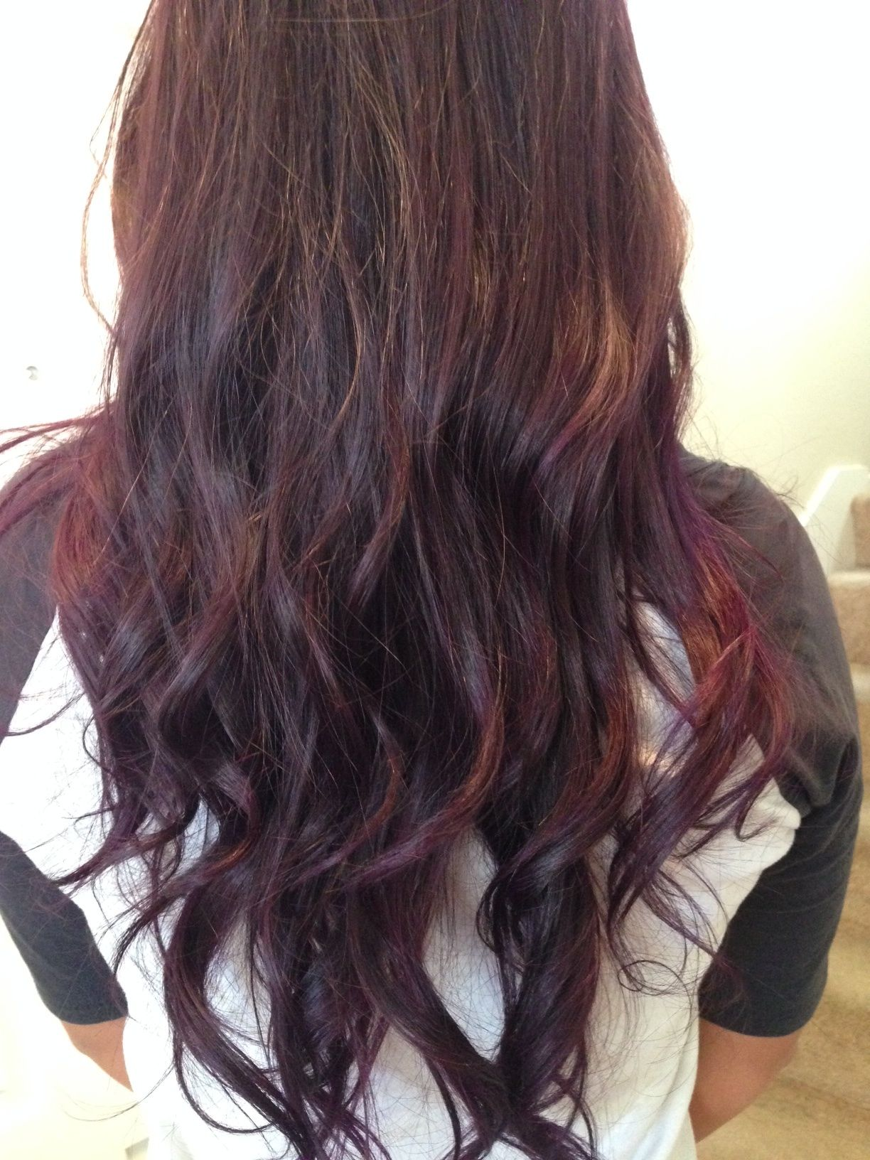 hair styles tips brown plum for my next color i m psyched 5589