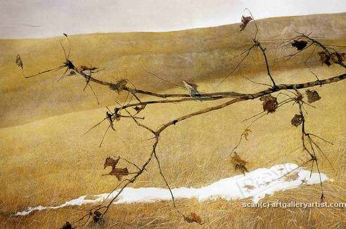 Artistry that I admire. Andrew Wyeth...