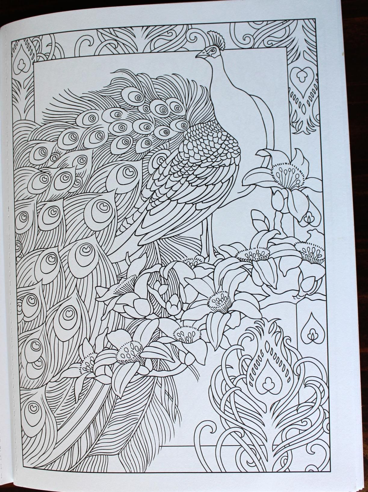 Creative Haven Peacock Designs Coloring Book Books Marty Noble 9780486779966 Amazon