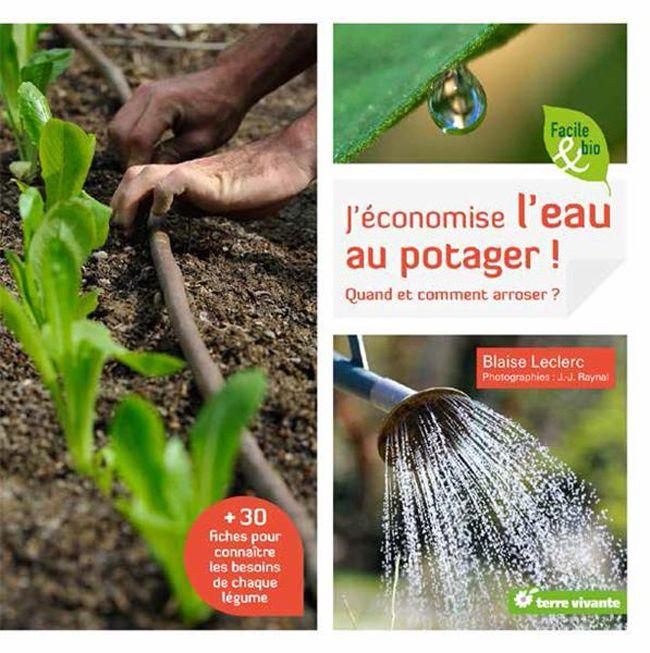 Comment Economiser L Eau D Arrosage Au Jardin Potager