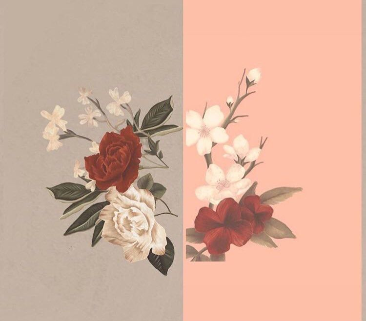 Shawn Mendes Flower Wallpaper In My Blood